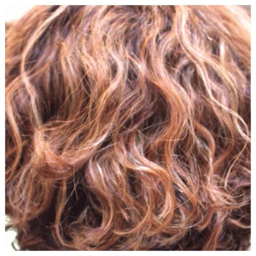 Partial Highlights on Curly Hair