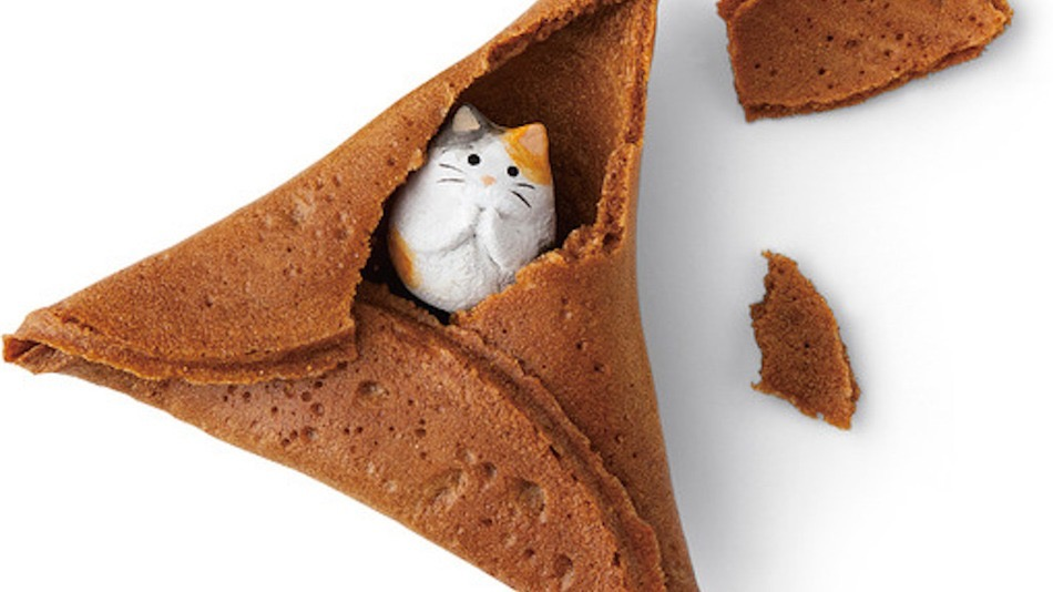 Fortune cookie with tiny cat inside